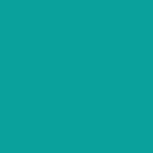 SaySo icon