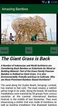 Amerop E-Magazine Bamboo apk screenshot