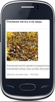 Мед с пасеки poster