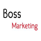Boss Marketing Solar icon