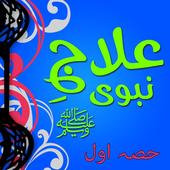 Tib-E-Nabvi icon