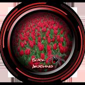 Rose Garden Flowers Design icon