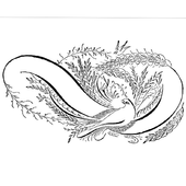 Calligraphy Designs icon