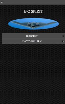 B-2 Stealth Bomber FREE poster