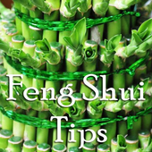 Feng Shui Tips For Business icon