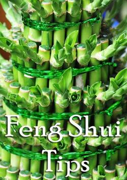 Feng Shui Tips For Business poster