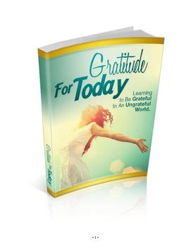 Gratitude For Today poster