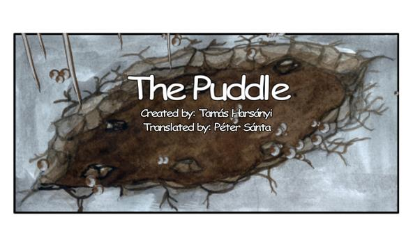 The Puddle poster