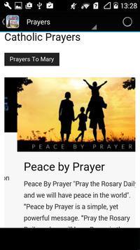 Douay Rheims Holy Bible apk screenshot