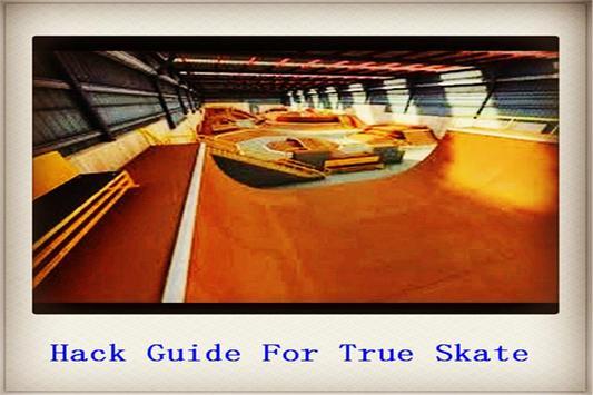 Guide for True Skate poster