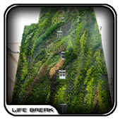 Vertical Garden Design Ideas icon
