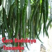 Cara Budidaya Tanaman icon
