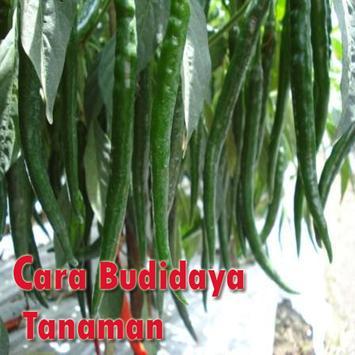 Cara Budidaya Tanaman poster