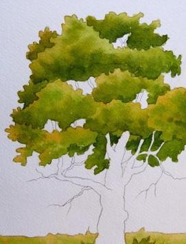 Painter beginners apk screenshot