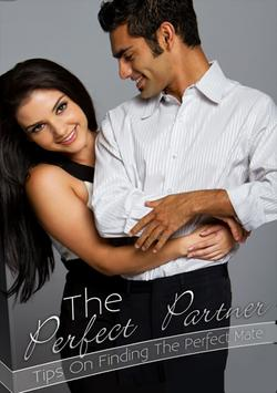 Perfect Partner poster