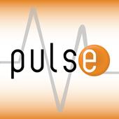 RunIt Pulse icon