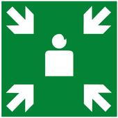 REVERSE Lite icon