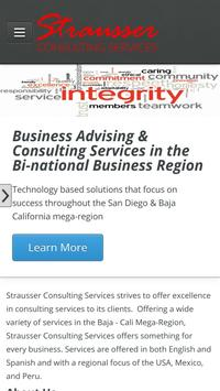 Strausser Consulting Services poster