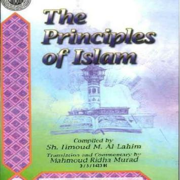 The principles of Islam poster