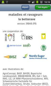Maladies de la betterave [BE] poster