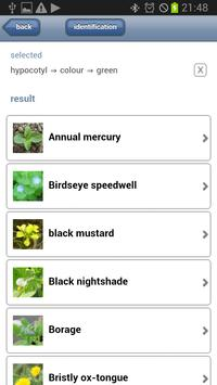Weed Identification apk screenshot