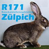 Kaninchenzuchtverein Zülpich icon