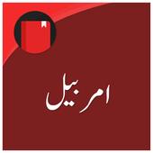 Amarbail (Urdu Novel) icon