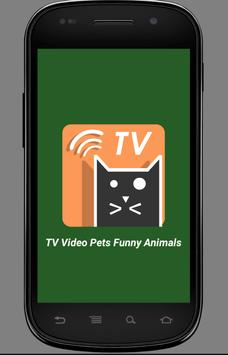 TV Video Pets & Funny Animals poster