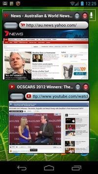 OverSkreen Floating Browser poster