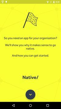 Native/ poster