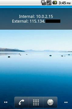 Show IP Widget apk screenshot
