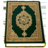 Quran Turkish icon