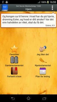 Det Norsk Bibelselskap poster