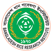 Rice Knowledge Bank icon