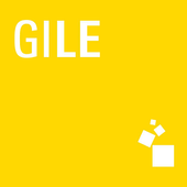 GZ International Lighting icon