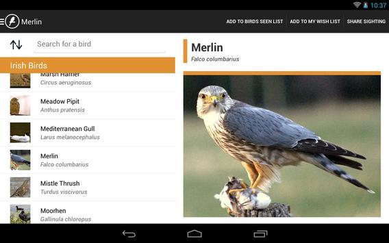 Irish Birds apk screenshot