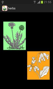 Home herbal poster
