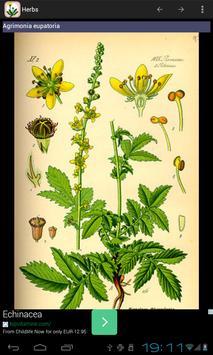 Home herbal apk screenshot