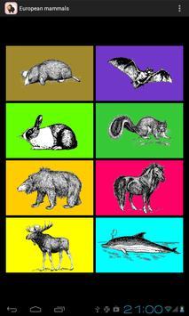 European Mammals apk screenshot