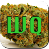 Weed Quotes icon