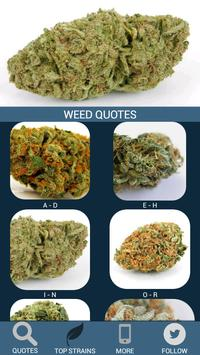 Weed Quotes poster