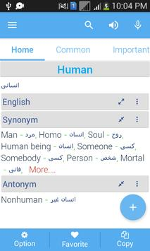 Persian dictionary apk screenshot