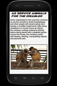 Monkey Info Book apk screenshot