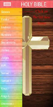 Holy English Bible apk screenshot
