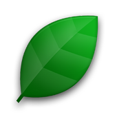 Efficiency (free) icon