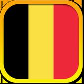 The Belgian Constitution icon