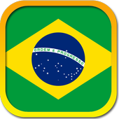 Constitution of Brazil icon