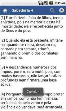 Bíblia Sagrada Almeida Grátis apk screenshot