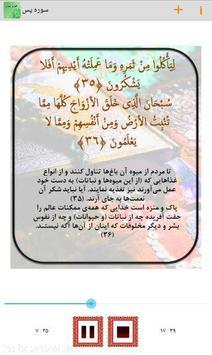 سوره یاسین poster