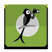 Bird Explorer India icon